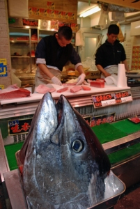 Oh to sample the fresh tuna...