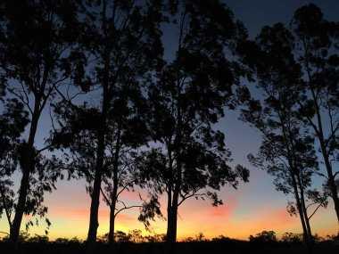 Glorious twilight